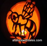 pumpkin bee