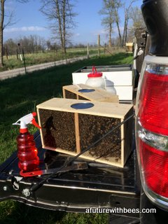 Packages of honey bees waiting to be installed